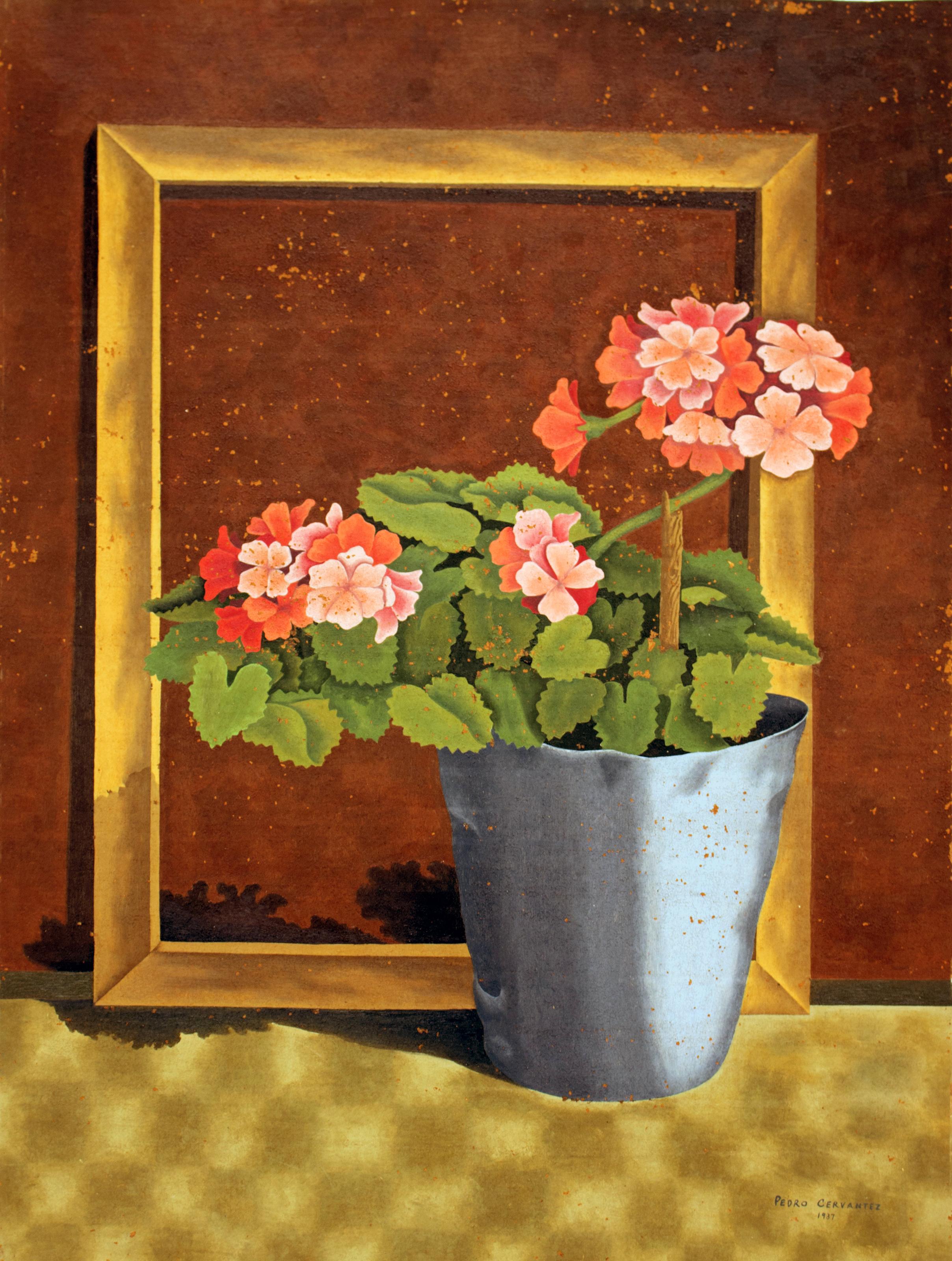 <em>Geraniums</em>