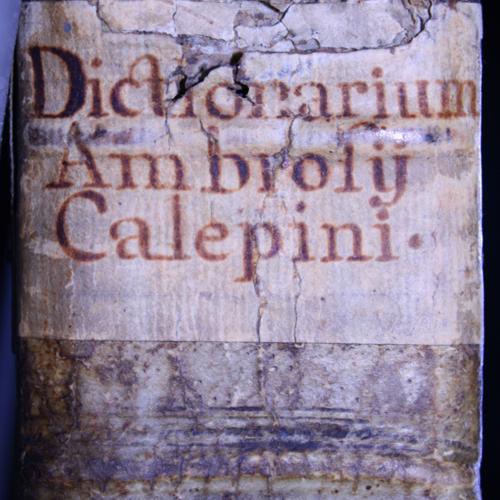 calepino1516a.jpg